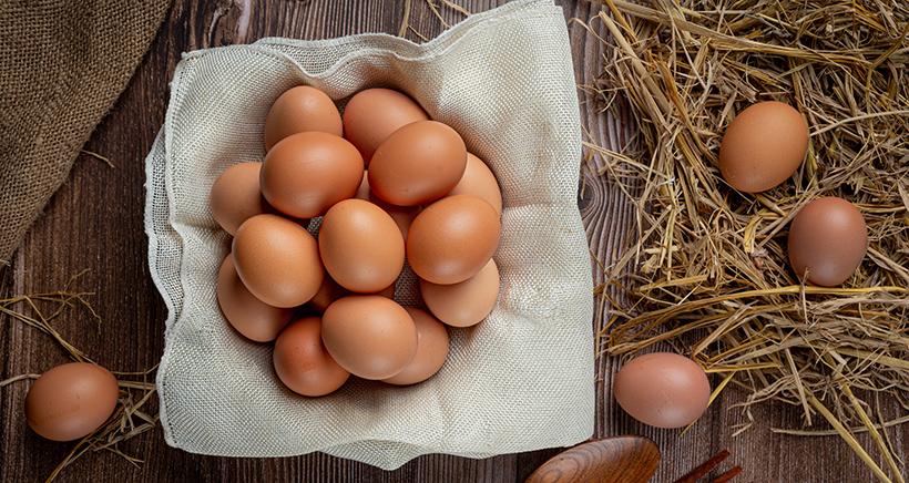 Ekološko pridelana jajca