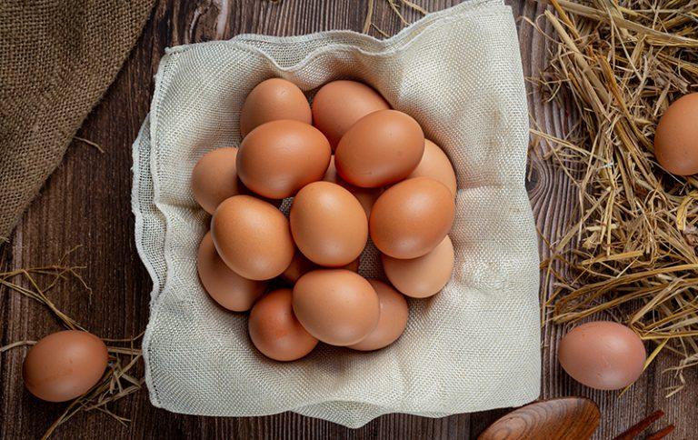 Ekološko pridelana jajca – kako se razlikujejo od običajnih?