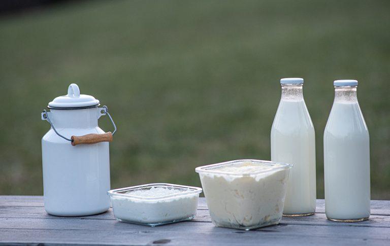 Rinfuza in ekološko pridelana hrana – z roko v roki