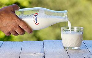 Mleko Mlekarne Krepko