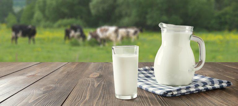 Rastlinski napitki – ali lahko nadomestijo mleko?