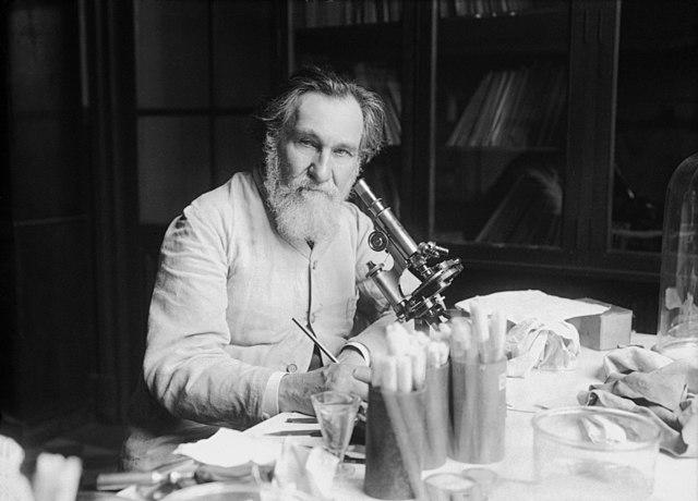Dr. Eliej Metchnikoff, ruski imunolog